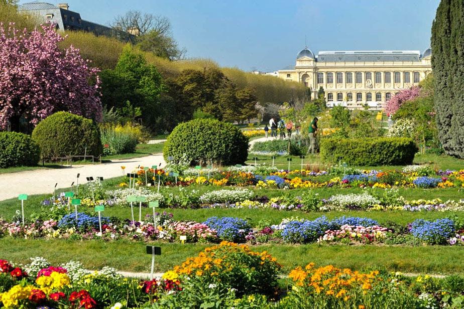 Jardin des plantes horarios y como llegar descubriparis - Le jardin des plantes paris ...