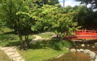 Jardin japones en Paris